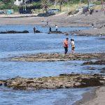 GW前半(2018.4.29)の三戸浜海岸。